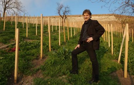 Egyik legnagyobb sikerének a budai szőlőhagyomány újraélesztését tartja